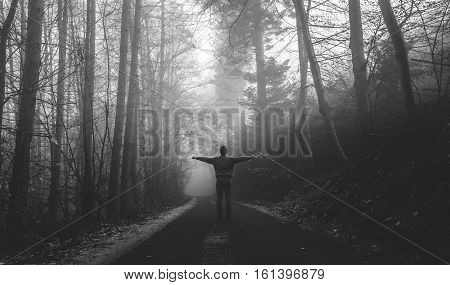 Alone Man on Road Among Misty Forest Black and White