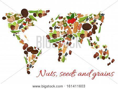 World map poster of vector nuts, grains, seeds. Vector nut, grain, kernels, natural nutritious coconut, almond, pistachio, cashew, hazelnut, walnut, bean pod, peanut, sunflower wheat ears pumpkin seeds Vegetarian healthy raw food concept