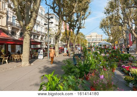 Beziers, France - September 23, 2016: Beziers street scene, Allees Paul Riquet on market day, people buy plants and produce, popular area for cafes and bars with theatre at end of promenadebars with theatre at end of promenade