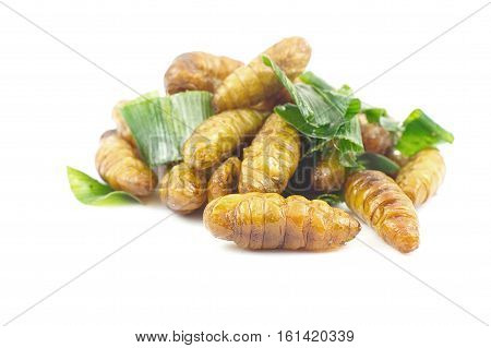 Silkworm pupa fried with green pandan leaf isolated on white background Traditional Thai food.
