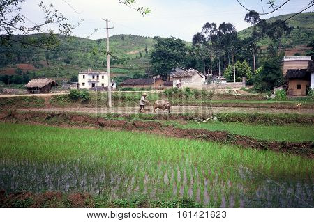 A small farming village, with rice paddies and rows of vegetables, beneath mountain karsts near Yangshuo, China, circa 1987.