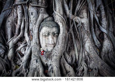 Head Of Sandstone Buddha In Thailand