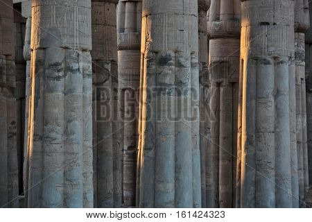 Columns of Luxor temple in Egypt