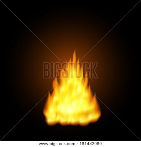 Vector illustration of  Realistic orange fire flames