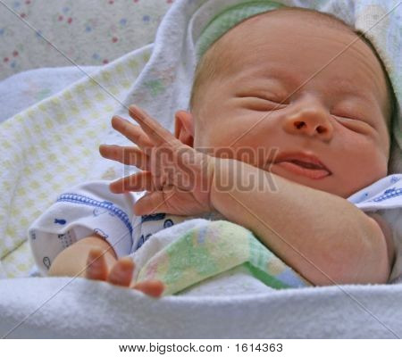 Newborn Asleep (2 Weeks Old)