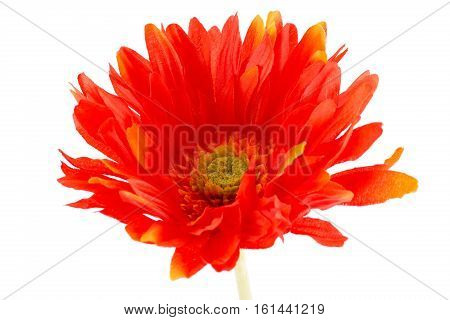 Red fabric daisy isolated on white background closeup picture.