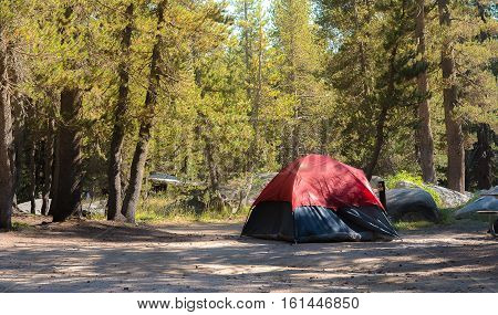 Camping tent in campground in Yosemite during vacation