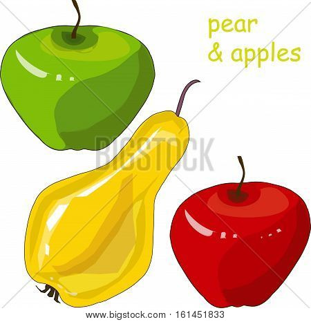 Hand drawn painting red and green apples, yellow pear on white, stock vector illustration