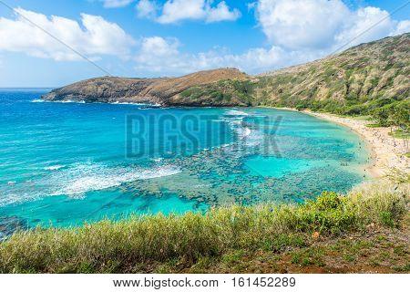 Snorkeling Bay Hanauma Bay in Oahu Hawaii