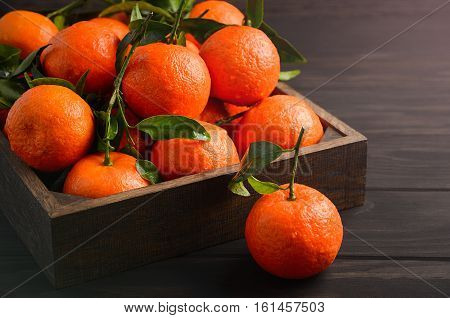 Fresh tangerine clementine with leaves in wooden tray on dark wooden background, horizontal, selective focus, copy space