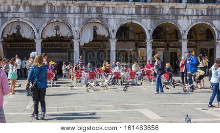 St. Mark's Square Venice Italy - May 02 2016: Birds fighting over food which is very aggressive seagulls stole from the hands of the tourist.