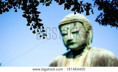 Buddha statue and japan travel concept - Silhouette leaf with blurred face of Great Buddha daibutsu statue in Kamakura Japan