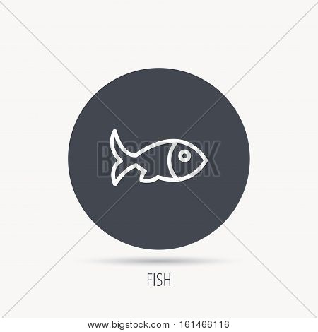 Fish with fin icon. Seafood sign. Vegetarian food symbol. Round web button with flat icon. Vector