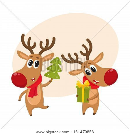 two deer holding a Christmas tree and a gift box, cartoon vector illustration isolated with background for text. Christmas red nosed deer, holiday decoration element