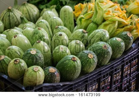 Fresh zucchini in a box on the counter in a grocery store for sale. Zucchini in a box for sale at the market. Horizontal. Selective focus. Close up.