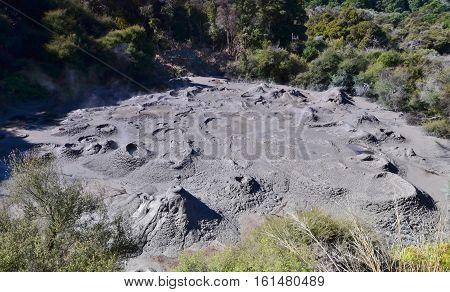 Whakarewarewa - abbreviation completely same it sounds like Te Whakarewarewatanga O Te Ope Taua A Wahiao and means