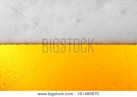 Light beer bubbles closeup