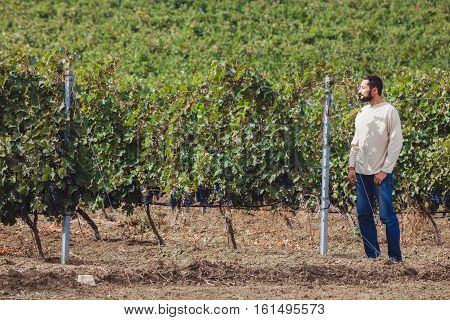 grower near the vineyards on a sunny day. Satisfied with their work