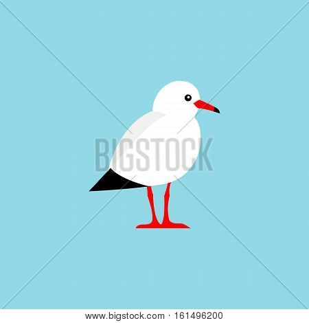 Vector bird isolated on a blue background. Colorful seagull bird vector illustration.