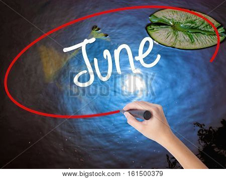Woman Hand Writing June  With Marker Over Transparent Board
