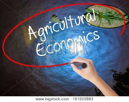 Woman Hand Writing Agricultural Economics With Marker Over Transparent Board