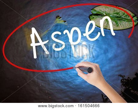 Woman Hand Writing Aspen With Marker Over Transparent Board