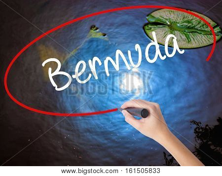 Woman Hand Writing Bermuda With Marker Over Transparent Board