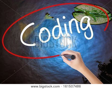 Woman Hand Writing Coding With Marker Over Transparent Board