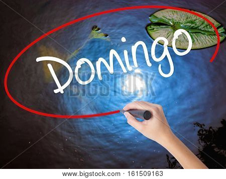 Woman Hand Writing Domingo  (sunday In Spanish/portuguese) With Marker Over Transparent Board