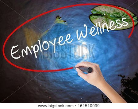 Woman Hand Writing Employee Wellness With Marker Over Transparent Board
