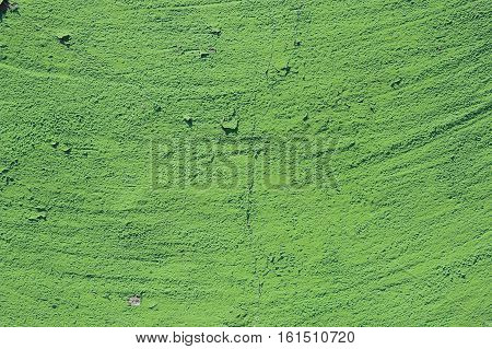 green grunge cement background. greenery, color of the year 2017. Pantone