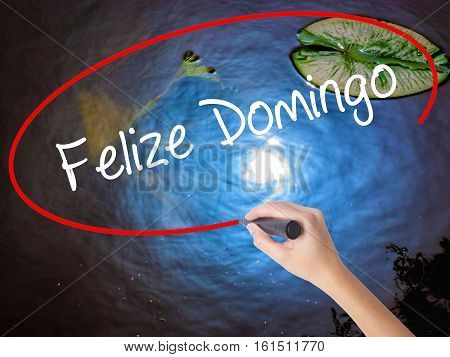 Woman Hand Writing Felize Domingo (happy Sunday In Spanish/portuguese)  With Marker Over Transparent