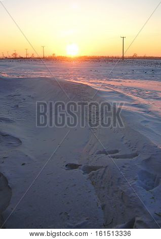 Winter snowbound rural field at the sunset in January. Rustic theme background