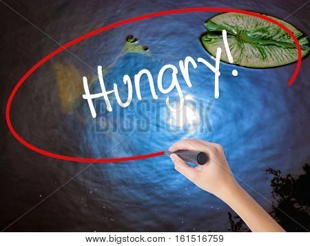 Woman Hand Writing Hungry! With Marker Over Transparent Board