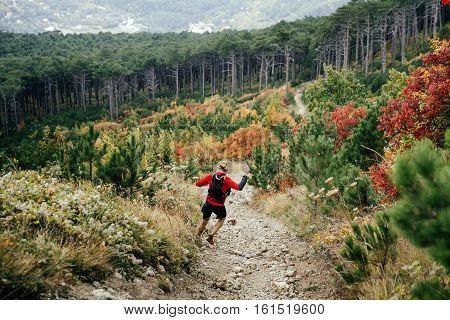 male athlete runner marathon running mountain steep descent