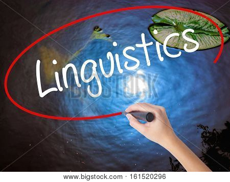 Woman Hand Writing Linguistics  With Marker Over Transparent Board
