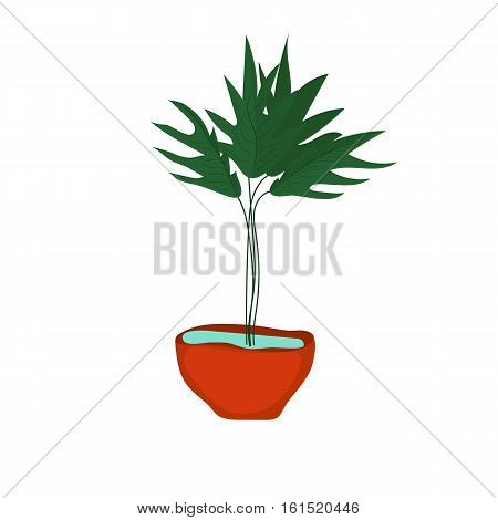 Fern tree vector silhouette on white background