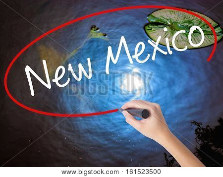 Woman Hand Writing New Mexico With Marker Over Transparent Board