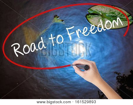 Woman Hand Writing Road To Freedom With Marker Over Transparent Board.