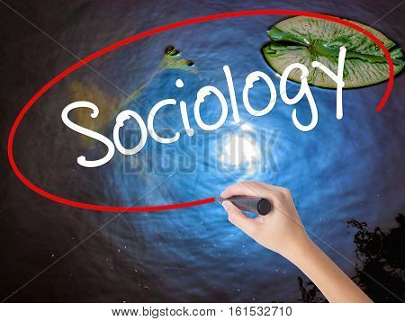 Woman Hand Writing Sociology  With Marker Over Transparent Board