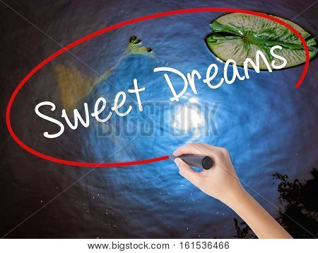 Woman Hand Writing Sweet Dreams With Marker Over Transparent Board