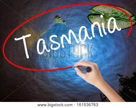 Woman Hand Writing Tasmania With Marker Over Transparent Board