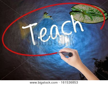 Woman Hand Writing Teach With Marker Over Transparent Board.