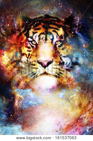 magical space tiger, multicolor computer graphic collage