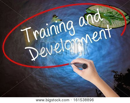 Woman Hand Writing Training And Development With Marker Over Transparent Board