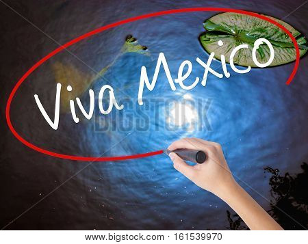 Woman Hand Writing Viva Mexico With Marker Over Transparent Board