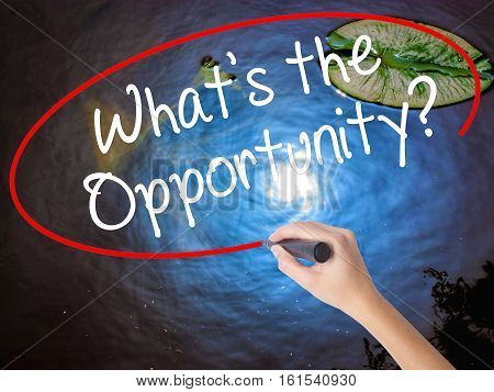 Woman Hand Writing What's The Opportunity?  With Marker Over Transparent Board
