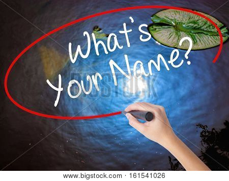 Woman Hand Writing What's Your Name? With Marker Over Transparent Board