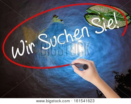 Woman Hand Writing Wir Suchen Sie! (looking For You In German) With Marker Over Transparent Board