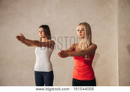 two young women on yoga classes, hands together, yoga, fitness, sport, and healthy lifestyle concept - two women making yoga exersice